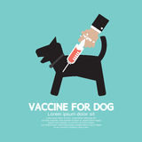 Dog's Vaccine To Prevent Illness. Vector Illustration Royalty Free Stock Photography
