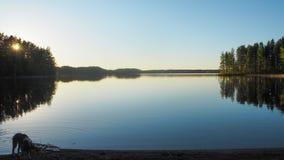 Dog at saimaa lake in finland. At sunset royalty free stock photos