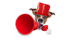 Dog sale megaphone Stock Image
