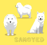 Dog Samoyed Cartoon Vector Illustration Stock Image