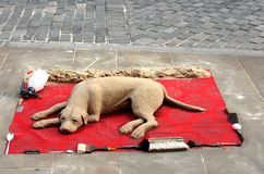 Dog sand sculpture. Sand sculpture of a dog lying on a red blanket Royalty Free Stock Images