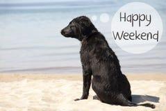 Dog At Sandy Beach, Text Happy Weekend Stock Photos