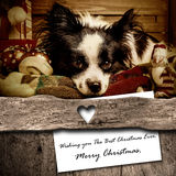 Dog and Santa Christmas greeting  card composition Stock Photo