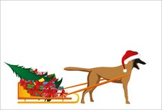 A dog in a Santa Claus hat carries a sleigh with gifts. A dog in a Santa Claus hat carries a sleigh with gifts and a Christmas tree for the Christmas holiday Stock Photos
