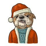 Dog Santa claus in hat, coat. Happy New Year lettering Stock Photos