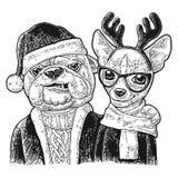 Dog Santa hug deer. Happy New Year lettering Stock Photo