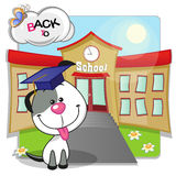 Dog and school Stock Images