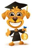 Dog school graduation. Yellow puppy in black robe holds reward Stock Photo