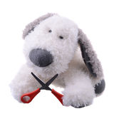 Dog with scissors Stock Images