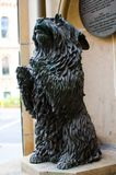 Dog sculpture at in front of Queen Victoria building, which is statue of a Queen Victoria`s favorite pet named `Islay`. The Dog sculpture at in front of Queen stock image