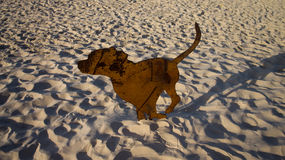 Dog sculpture. A sculpture made up of rusted steel and formed to a shape of a dog. Photo taken on: September 15th, 2013 during the Swell Sculpture Festival in Royalty Free Stock Photography