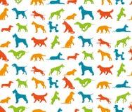 Dog seamless pattern Stock Photo