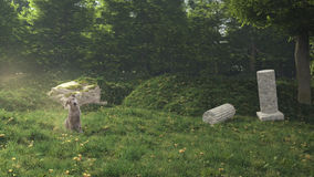Dog In The Secret Garden.3D rendering Stock Photos
