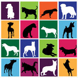 Dog set Royalty Free Stock Image