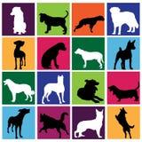 Dog set. Vector set of dog silhouette Royalty Free Stock Image