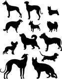 Dog set. Vector Illustration of a dog set Stock Images