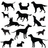 Dog set. Collection of  silhouette Stock Photo