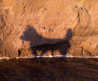 Dog Shadow at the Beach Stock Photography