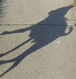 Dog Shadow. The shadow of a Chihuahua walking on the sidewalk Stock Photo