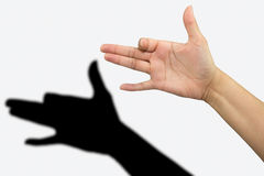Dog shadow hand. Shadow theatre with hands showing a dog Royalty Free Stock Images