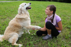 Dog shaking hands with a child. A dog is shaking hands with a child on a meadow Stock Photos