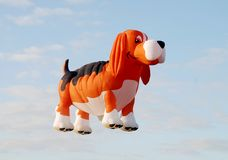 Dog shaped balloon Stock Photos