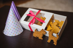 Dog shaped pet cookies in box Stock Images