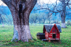 Dog shed in courtyard Royalty Free Stock Photography