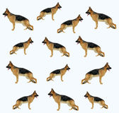 A dog (shepherd) pattern. In triangulation technique Stock Images