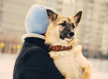 Dog Shepherd Puppy and Woman hugging Outdoor Royalty Free Stock Image