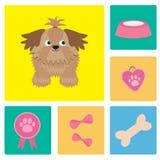 Dog Shih Tzu and dog stuff bow bone food medal award. Square icon set. Stock Photos