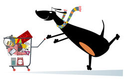 Dog is shopping. Dog pushes a shopping trolley full of purchases Royalty Free Stock Images