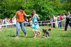 Dog show. SUMY, UKRAINE - JUNE 27: Participants compete in dog show 27, 2010 in Sumy, Ukraine Stock Photo