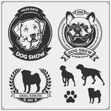 Dog Show emblems, labels, badges and design elements. Cute friendly pets characters. French Bulldog and Golden Retriever.