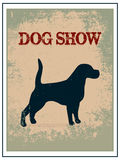 Dog show poster. On vintage background Royalty Free Stock Photos