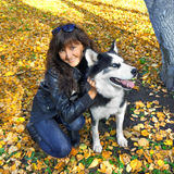 Dog siberian husky and young woman Stock Photography