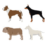 Dog Side View Set 5. Dog Side View Vector Set 5 Stock Photography
