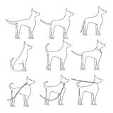 A dog sideways in full growth sketch in different poses. Walking with pet Royalty Free Stock Photo