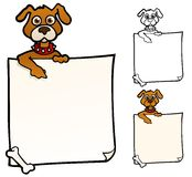 Dog with a sign Stock Images