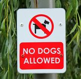Dog Sign. Royalty Free Stock Images