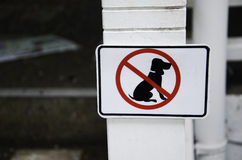 Dog signs. White colored dog that never came Royalty Free Stock Photos