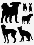 Dog Silgouettes Stock Photography