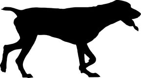 Dog silhouette Stock Images