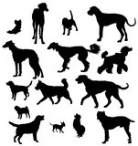 Dog Silhouette Royalty Free Stock Photos