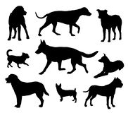 Dog silhouette, dogs in different poses. Black dogs silhouettes isolated on white background, dogs in different poses vector illustration