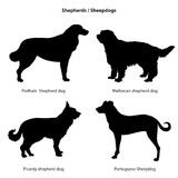 Dog silhouette icon set. Sheped dog collection. Sheedogs Stock Image