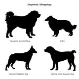 Dog silhouette icon set. Sheped dog collection. Royalty Free Stock Image