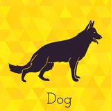 Dog silhouette on triangles background Stock Photos