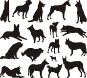 Dog silhouette vector stock illustration