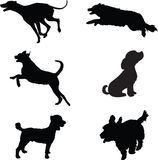Dog Silhouettes Royalty Free Stock Photography